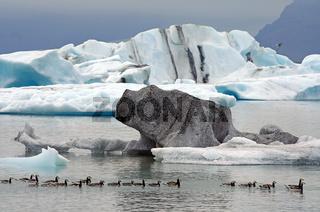An der Gletscherlagune Breidamerkurjökull