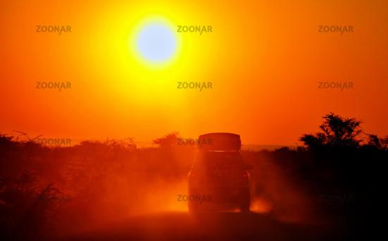 Auf Safari - Auto fährt in den Sonnenaufgang, Etosha-Nationalpark, Namibia,   On Safari - car is driving in the sunrise, Etosha National Park, Namibia