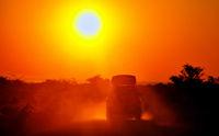 Auf Safari - Auto fährt in den Sonnenaufgang, Etosha-Nationalpark, Namibia, | On Safari - car is driving in the sunrise, Etosha National Park, Namibia