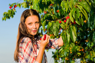 Cherry tree harvest summer beautiful woman sunny