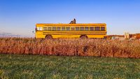 vintage yellow school bus adventure