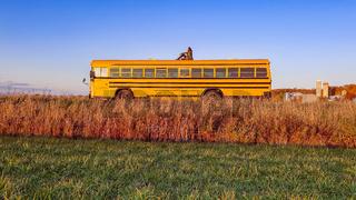 vintage yellow school bus adventure