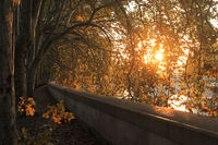 Rome, Tiber embankment, autumn sun