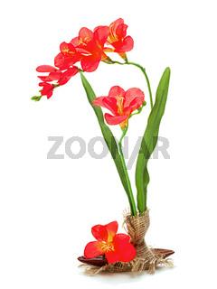 Still life from artificial freziya flowers.