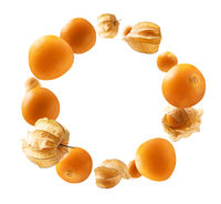 Physalis berries levitate on a white background