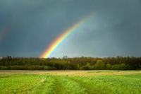 Rainbow over the forest and green meadow, Czulczyce, Poland
