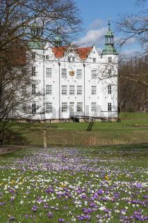 Schloss Ahrensburg, Wiese mit Krokussen