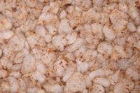 Background of crunchy rice crispbread with bran