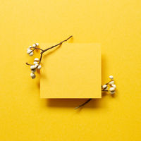Blank card paper with dry plant on yellow background. top view, copy space