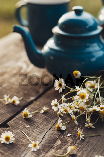 The wonderful chamomile with tea set in nature