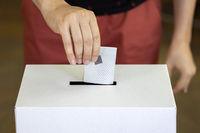 Person casts his vote