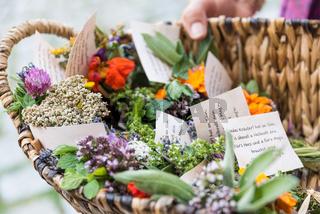 Kräuterbüscherl am Fest Maria Himmelfahrt - Kräuterweihe
