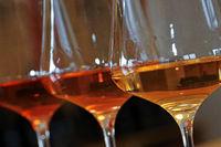 Weinglaeser mit Weinsorten 2.jpg