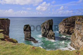 UK Pembrokeshire Elegug Stacks