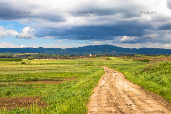Country road through agricultural landscape of Prigorje, village of Miholec