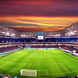 Soccer stadium arena with natural green grass