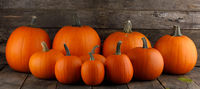Many different ripe pumpkins