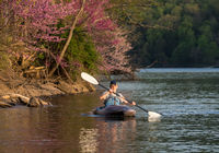 Man in small white water kayak coming towards the viewer on lake
