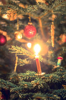 Candle on traditional decorated Christmas tree, evening