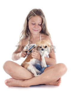 child and chihuahua