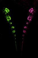 verschieden farbiger rauch