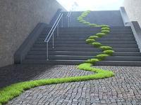 Urban ecology concept
