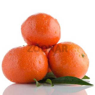 Ripe tangerines or mandarin