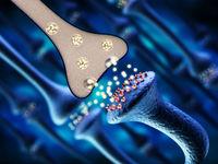 3D illustration of brain neurons. 3D illustration