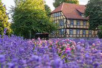 Impressionen aus Quedlinburg im Harz