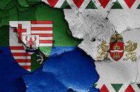 flags of District XVII. (Rakosmente) and Budapest painted on cracked wall
