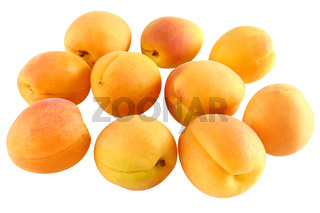 Zehn fruchtige Aprikosen - freigestellt