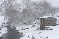Pine trees and a refuge house covered in snow on a white winter landscape with a river crossing in Mondim de Basto, Portugal