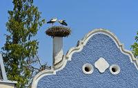 Begrüssungsritual von Weissstörchen (Ciconia ciconia) am Nest auf einem Burgenländer Bauernhaus mit Barockgiebel