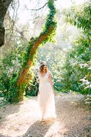The bride stands near the beautiful tree covered with ivy in a picturesque park