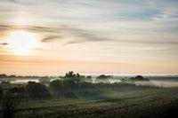 Misty morning on the shore of lake neusiedl near Oggau in Burgenland