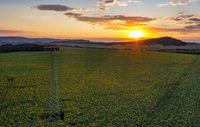 Sonnenblumenfeld aus der Luft mit stimmungsvollen Sonnenuntergang im Harz