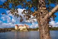 Blick auf das Schloss Moritzburg in Sachsen