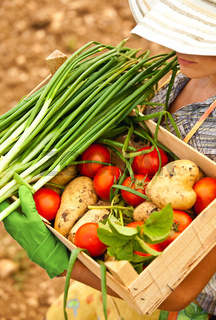 Farmer carrying chest of vegetables