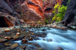 Zion Canyon Narrows