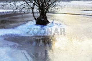 Baum im Eis, Dreisbach, Saarland, Germany