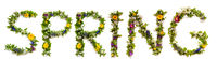 Flower And Blossom Letter Building Word Spring