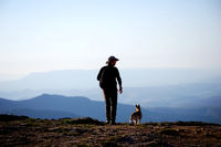 man with a dog on a cliff above a mountain valley.