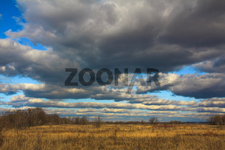 Dried grass in an autumn field under gloomy gray clouds