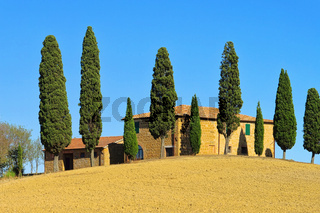 Podere im Herbst - Podere in fall 23