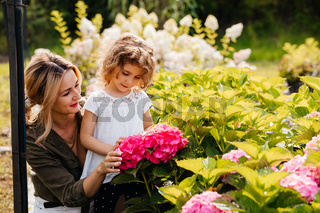 Mom introduces her daughter to beautiful hydrangeas