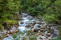 Magic Forest Zauberwald at Lake Hintersee with Creek Ramsauer Ache. National Park Berchtesgadener Land, Germany