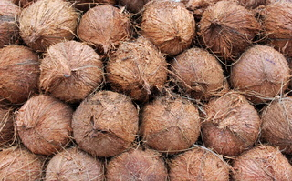 Shelled Coconuts for sale in stall, Juhu Beach, Mumbai, India