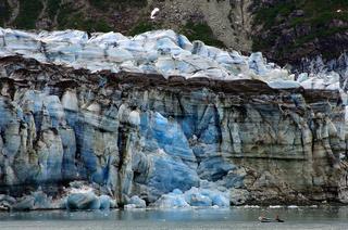 Maritimer Gletscher im Glacier Bay National Park