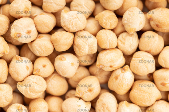 Uncooked chickpea background texture. Full frame Cicer arietinum
