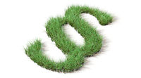 Gras als Paragrafensymbol